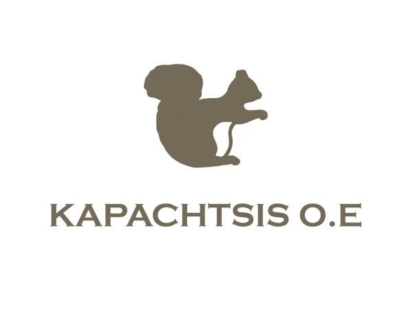 KAPACHTSIS OE