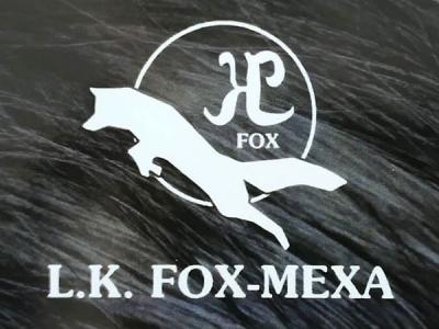 LK FOX MEXA